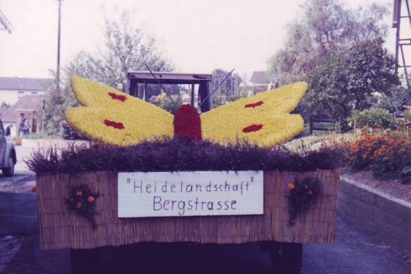 bergstrasse 2006 Strassenfest 061